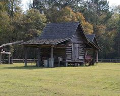 """(ALABAMA) Dothan's Landmark Park, the official state agricultural museum. Features of the 100-acre park include an 1890s living history farm, a one-room schoolhouse, a general store, a turn-of the-century church, elevated boardwalks, nature trails, wildlife exhibits, a planetarium, """"barnyard playground"""" and a picnic area."""