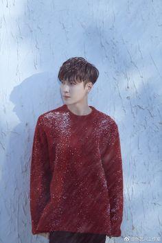 Lay Winter special album #2017