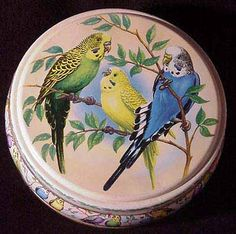 Cute budgie tin - Peak Frean's biscuits We used to have a similar to this but in green colour.