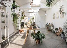 Flo-Atelie-Botanical-shop-by-Epicentro-brazil-016