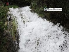 The milky Waterfall is a beautiful tourist spot located at a distance of 5 km from Nainital on the way to Kaladungi (just below Sariyatal). #landscape #photo #image #photography #nature #travel #art #beinspired #sky #sunrise #sea #digital #surreal #amazing #creative #beautiful #garden #mountains #sun #spring #clouds #beach #scenic #awesome #sunset #photooftheday #cool #colors #scenery #love #Instagram #AkanshaGautam #AuthorAkansha #WeAreAwesome #Photo #Photography #Travel #Nature #Landscape…
