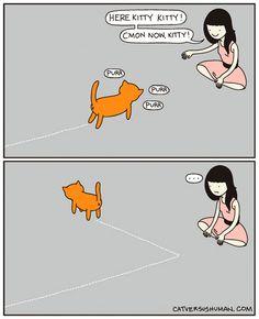 funny cat comics culturainquieta