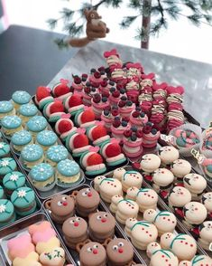 Blackbangtan X Exovelvet Shipper ! Macaroon Recipes, Dessert Recipes, Christmas Treats, Christmas Baking, Macaroon Cookies, Shortbread Cookies, Cute Baking, Holiday Cupcakes, Think Food