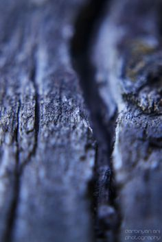 wood by ani darbinyan