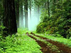 Loreena McKennitt - The Two Trees