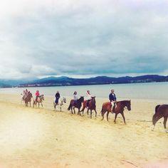 #horseriding #atthebeach #horses #surfcamp #spain #beach #sand #excursion #travel #summer #ocean #sea #nature #horselove #surfing #programm #sky #planetsurf #planetsurfcamps