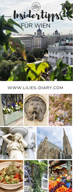 Insider tips Vienna – the most beautiful sights, cafés & more – Famous Last Words Bryce Canyon, State Parks, Shop Architects, Budapest, Visit Utah, Go Skiing, Reisen In Europa, Vienna, Cool Places To Visit