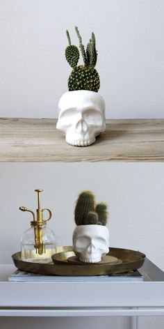 Whether you think human skulls are spooky, scholarly, or simply naturalistic, Mudpuppy's handmade ceramic skull planters are perfect planters, tabletop containers for small personal effects, or even p