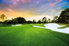 Royal Pines Golf Course in Gold Coast, Queensland Golf N Stuff, Stuff To Do, Mermaid Beach, Family Getaways, Holiday Accommodation, Short Break, Golf Carts, Golf Ball, Gold Coast