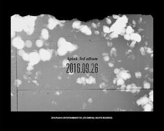 Apink are ready for their next 3rd album …
