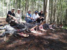 Tom Walker Hog Hunter and TV Personality Florida Hog Hunting, Tom Walker, Crocodiles, Fishing, Crocodile, Fishing Rods, Gone Fishing