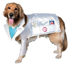 Rubies Costume Halloween Classics Collection Pet Costume, Doctor Barker Veterinarian Dog, Small >>> Find out more about the great product at the image link. (This is an affiliate link) Vet Costume, Doctor Halloween Costume, Puppy Halloween Costumes, Dog Halloween, Dog Costumes, Doctor Costume, Funny Costumes, Halloween Ideas, Costume Ideas