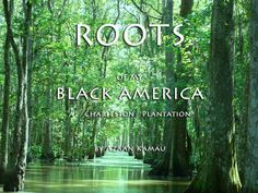 Author Kamau Azaan  AuthorsTourUSA.com My Black, Change The World, Roots, Author, America, Movie Posters, Writers, Film Posters, Billboard