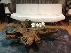 Table basse souche d'arbre/Tree roots coffee table