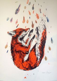 Autumn Fox | Jasmin Dwyer