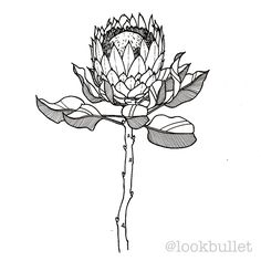"""299 Likes, 7 Comments - Look Bullet (@lookbullet) on Instagram: """"13 