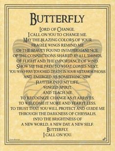 The Butterfly Prayer poster addresses the spirit of this wondrous creature, seeking to learn from its transformation, whimsical flight, and fragility. With beautiful words written by Travis Bowman and