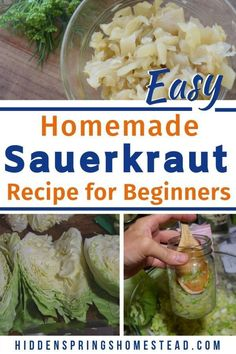 How To Make Sauerkraut Canning Sauerkraut, Homemade Sauerkraut, Sauerkraut Recipes, Cabbage Recipes, Korean Street Food, Korean Food, Fermented Foods, Canning Recipes, 2 Ingredients