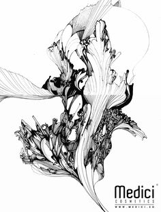 "www.medici.so [Medici x Peach Bang] ""Mobius's ""Carnation"" Law_뫼비우스의 카네이션 법칙_ink on paper """
