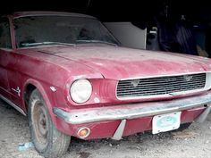 Article written by me: 1966 Mustang Fastback Barn Find | Street Legal TV