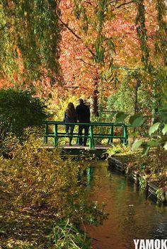 Monet's garden / Marion Marty
