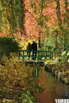 Monet's Garden-Giverny,France
