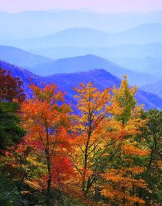 Breathtaking vista from the Green Knob overlook . at MP along the Blue Ridge Parkway in North Carolina --- by Nye Simmons Blue Ridge Parkway, Blue Ridge Mountains, Great Smoky Mountains, Fall Pictures, Nature Pictures, North Carolina Mountains, Autumn Scenes, Appalachian Mountains, Mountain Landscape