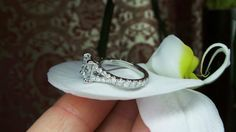 Diamond split shank engagement ring by David Klass Jewelry.