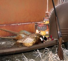8 Great Things About Aberdeen Pheasant Hunting - Gun #Dog Magazine