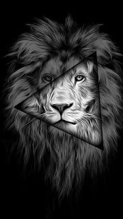 Iphone Wallpaper Black And White Lion 2 Wallpaper Wallpaper4k Wallpaperhd Wallpaperiphone Wallpape Black And White Lion Lion Painting Lion Wallpaper Iphone