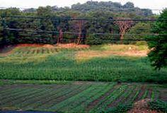 Busa Farm, Lexington, MA