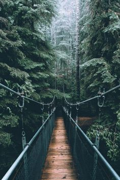 I miss Vancouver so much 😍 one of my fav places ever. Phot… Ich vermisse Vancouver so sehr – einer meiner. Nature Pictures, Cool Pictures, Beautiful Pictures, Nature Images, Nature Aesthetic, Travel Aesthetic, Polaroid Foto, Places To Travel, Places To Visit