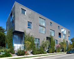 Willoughby 7917 / Lorcan O'Herlihy Architects