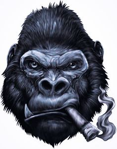 Search free monkey Ringtones and Wallpapers on Zedge and personalize your phone to suit you. Start your search now and free your phone Gorilla Tattoo, Tattoo Drawings, Art Drawings, Monkey Wallpaper, Gorilla Wallpaper, Cigar Art, Monkey Art, Wallpaper Pictures, Dope Art