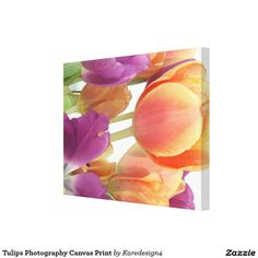 Tulips Photography Canvas Print