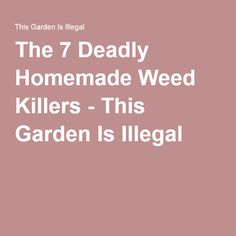 The 7 Deadly Homemade Weed Killers - This Garden Is Illegal