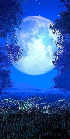 Goodnight. A beautiful fool moon here tonight in Scotland and I've alway's said I can never sleep when it is a full moon!