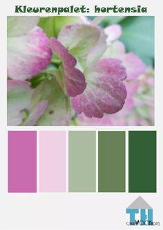 kleurenpalet hortensia