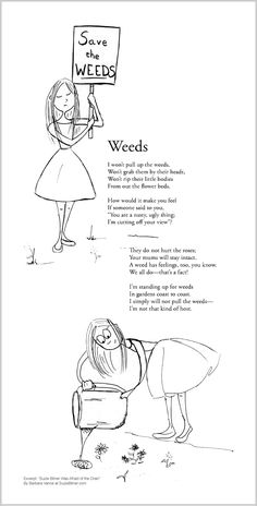 """Funny children's poem about weeds in a garden. Great for classroom reading lessons for kindergarten, and grade, common core, and for ESL lessons. Excerpt from the poetry collection, """"Suzie Bitner Was Afraid of the Drain"""" by Barbara Vance. Esl Lessons, Reading Lessons, Garden Poems, Kids Poems, Classroom Projects, Poetry Collection, Funny Kids, Weed, Kindergarten"""
