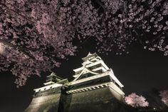 熊本城 Kumamoto Castle Amakusa, Japanese Castle, Kumamoto, Castle House, Nihon, Japanese Design, Great View, Worlds Largest, Samurai