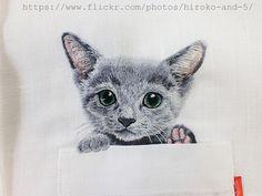 Перемена участи - Пинтерест парафото по четвергам: Коты в карманах