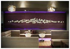 VIOLET Coffee Bar by Joseph Tucny, via Behance Portfolio Design, Joseph, Flat Screen, Designers, Behance, Bar, Coffee, Portfolio Design Layouts, Blood Plasma