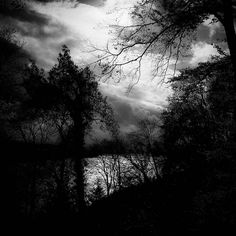 I know simply that the sky will last longer than I.  Albert Camus  #quote #tmoosoul #emotional_dark_pictures  #renegade_dark #darknature #bnw_planet_2017 #show_us_bw #bnw_rose  #forestlovers #forest_captures #forest_masters  #forest #divine_forest  #treesilhouette #treebranches#splendid_woodlands #forest_gallery #darkforest #instasky #skylovers #skyporn#clouds  #bnw_drama  #cloudappreciationsociety #cloudy  #moody_nature  #sombrebw #bw_photooftheday #stayandwander #ig_swisspictures taken and…