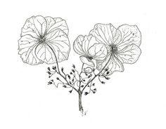 hydrangea tattoo idea