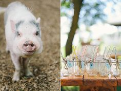 farm wedding inspiration - photo by Sara Wilde http://ruffledblog.com/pucks-farm-wedding