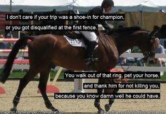 equestrian quotes | True that . Horse quotes | Quotes