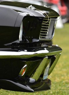 nice Terra Nova Hs Car Show Metal Print By Dean Ferreira Ford 2017 Mustang Shelby, Black Mustang, Classic Mustang, Mustang Cars, Mustang Fastback, Ford Mustangs, Us Cars, Sport Cars, Lamborghini