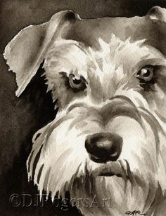 MINIATURE SCHNAUZER Sepia Art Print Signed by Watercolor Artist DJ Rogers by k9artgallery on Etsy https://www.etsy.com/listing/174134370/miniature-schnauzer-sepia-art-print