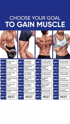 Get best results from your workouts and bulk up with Legal Dianabol that has no side effects and does not require PCT, dianabol bodybuilding, dianabol Gym Workout Chart, Abs Workout Routines, Gym Workout Tips, Workout Videos, Fun Workouts, Workout Men, Fitness Motivation, Exercise Motivation, Gym Workout For Beginners