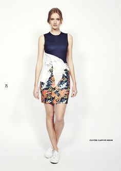 Look 75  http://www.oxygenboutique.com/clover-canyon.aspx